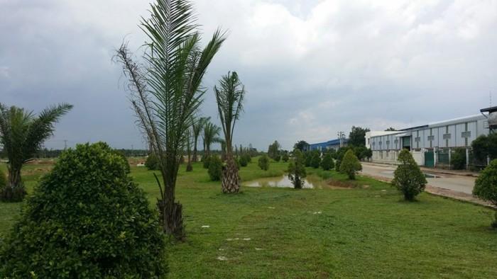 Đất dự án khu dân cư mới- 225 Dương Công Khi, Hóc Môn