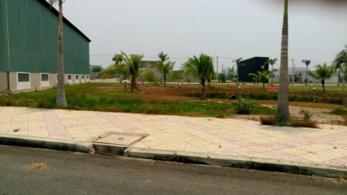 Đất nền khu Tân Tạo A mặt tiền đường Nguyễn Cửu Phú, SHR, ngay trường học Tân Tạo