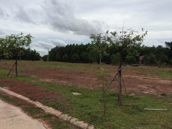Cho Thuê Xưởng Rộng 1000M2 Đã Có Nhà Xưởng Sản, Kinh Doanh Ngay, SHR