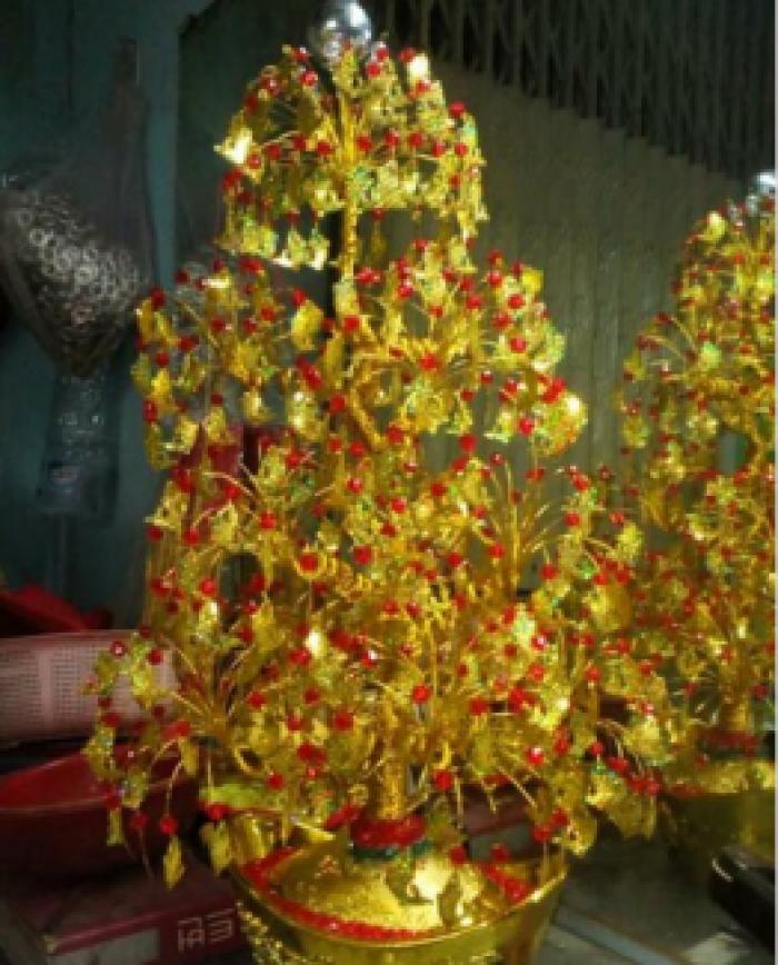 Nguyên liệu cây vàng cây tiền3