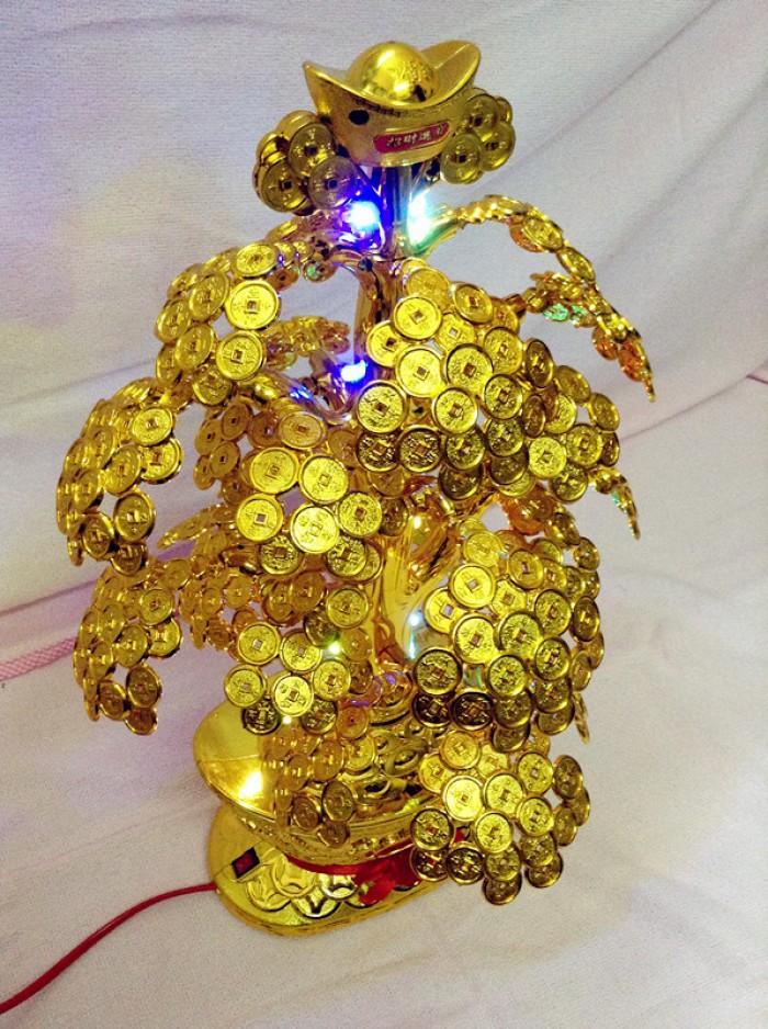 Nguyên liệu cây vàng cây tiền9