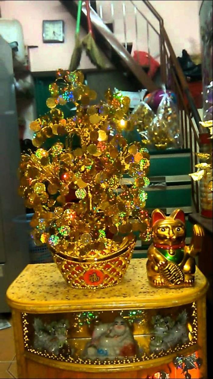 Nguyên liệu cây vàng cây tiền12