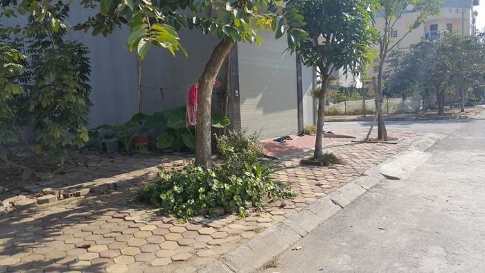 Bán đất tái định cư Trâu Qùy, DT 40 m2, MT 3 m, hướng TN, giá 29.5 triệu/m2.