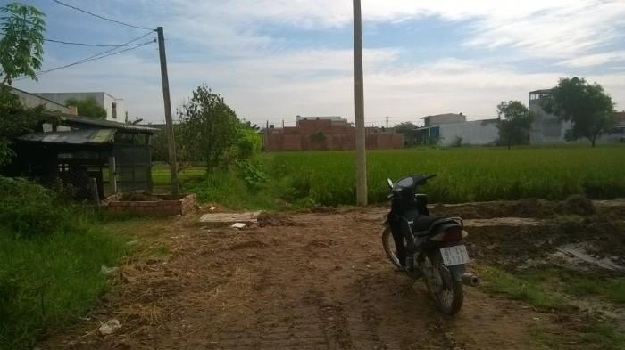 Cần tiền nhượng lại lô đất mặt tiền đường Cây Dương,khu công nghiệp Tân Đức, DT 300m2,SHR.