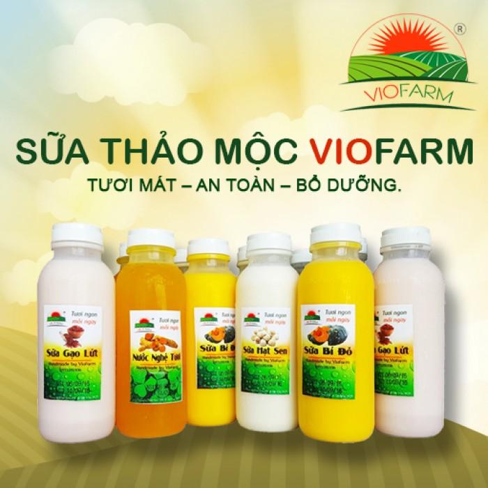 sữa thảo mộc VioFarm