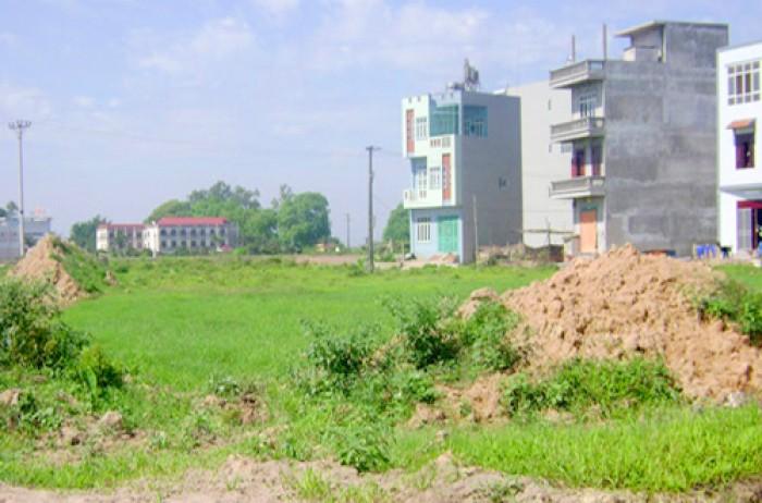 Cho thuê đất MT đường Trần Quốc Toản, vị trí kinh doanh đắc địa. 70tr/th