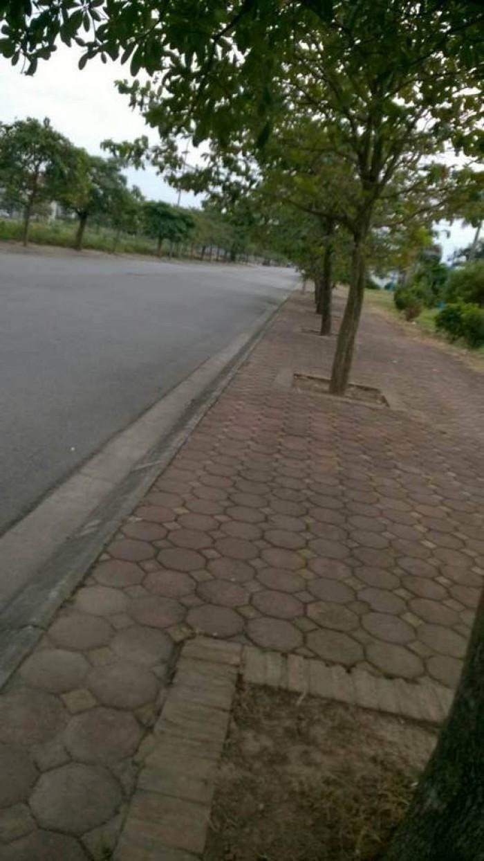 Cần bán mảnh đất khu đô thị 31ha Trâu Quỳ 93 m2 - Mt 5.89m - 26.5tr/m2 .