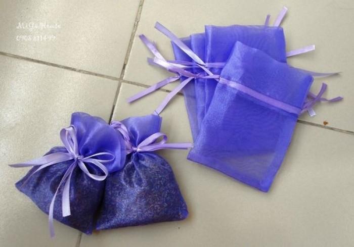 Hoa lavender provence_pháp6