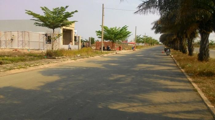 Đất thổ chính chủ Bình Chánh, đường Nguyễn Hữu Trí, Quốc Lộ 1A giá 6 - 8 triệu/m2