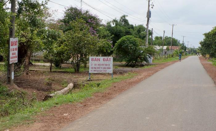 Bán đất sau lưng khu công nghiệp Long Đức – Long Thành – Đồng Nai