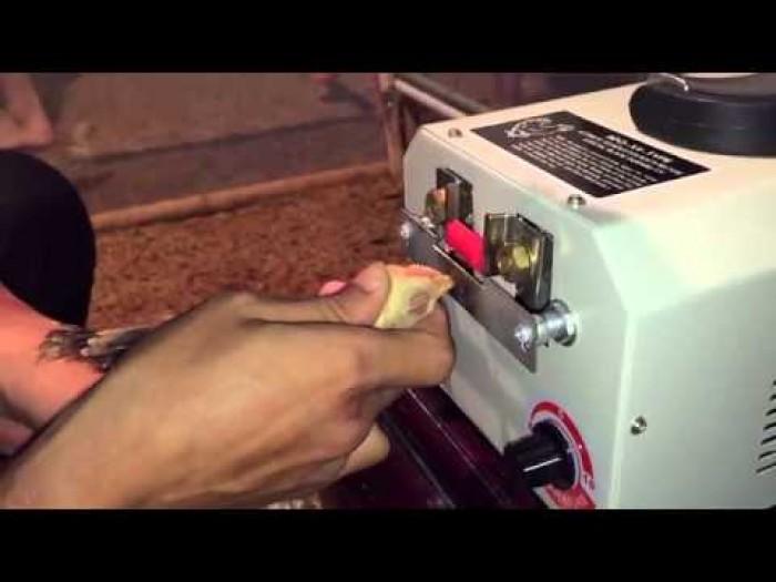 Máy cắt mỏ gà 9DQ-4 giá tốt nhất thị trường có tại Siêu thị máy 24h1