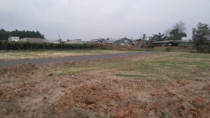 Bán đất nền dự án KCN Giang Điền. Sổ đỏ riêng từng lô. Nhận quà tặng giá trị khi mua đất.