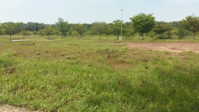 Siêu dự án đất nền, cơ hội sở hữu đất thành phố với giá rẻ, Quận 9, CÓ SỔ