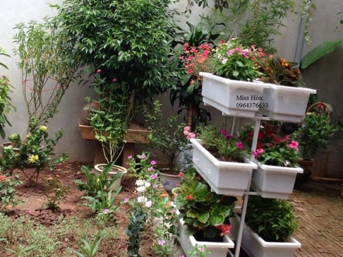Kệ để trồng rau hoặc trồng hoa đều tiện, khoảng cách giữa các tầng  đủ rộng để rau hoặc hoa phát triển tốt