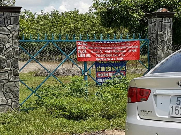 Bán đất xã Gia Lộc, Huyện Trảng Bàng , Tây Ninh