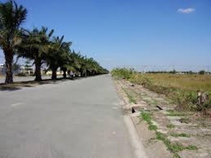 Đất thị trấn củ chi 300tr/nền,góp 12 tháng KLS,CK 5%,3 chỉ SJC,SHR từng nền