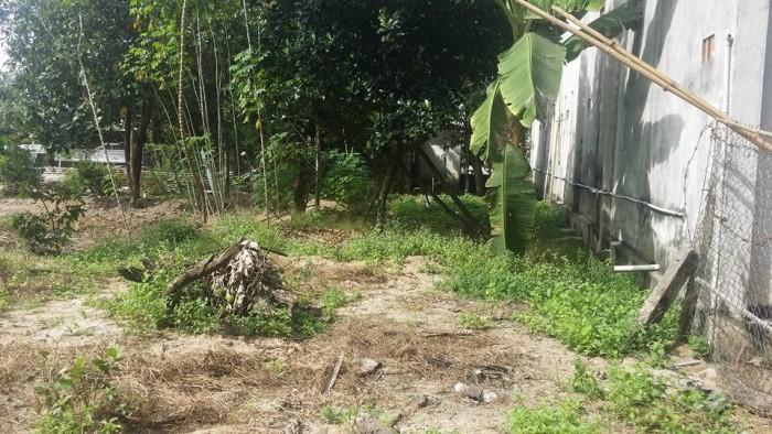 Sở hữu ngay 2.000 m2 đất vị trí đắc địa giữa cụm các KCN Long Thành!