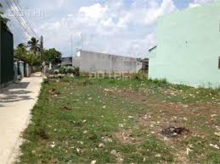 Đất Bình Chánh,Bán gấp lô đất  177m2  mặt tiền đường QL50-Huyện Bình Chánh