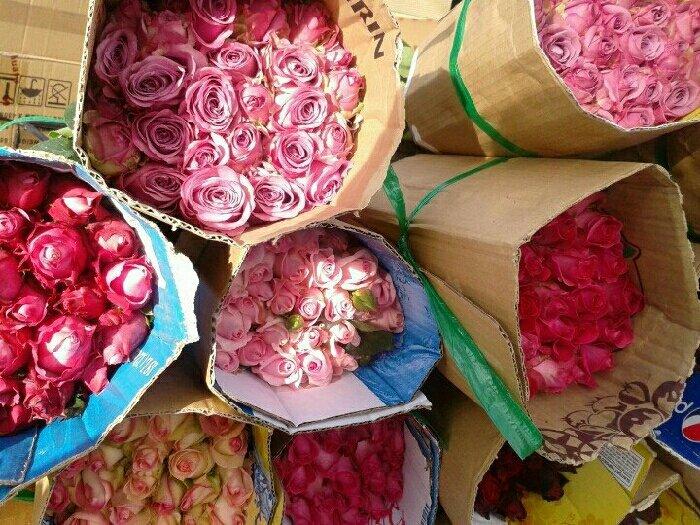 Sỉ hoa hồng cắt cành Đà lạt0