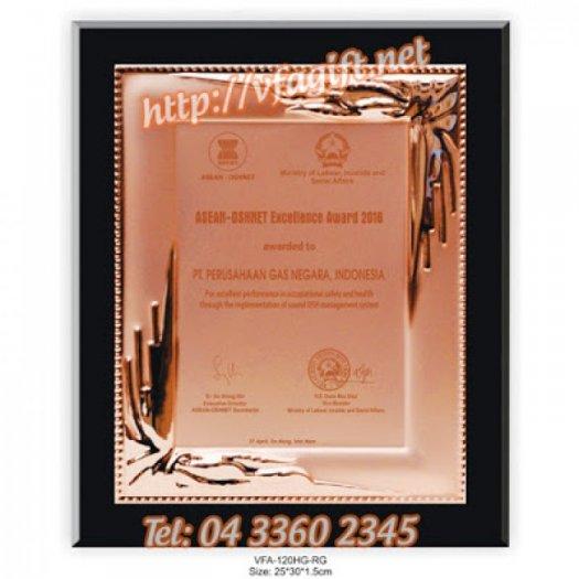 Biểu trưng thủy tinh, kỷ niệm chương pha lê, kỷ niệm chương thủy tinh6