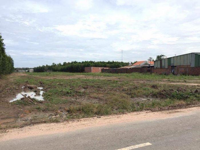 Đất nền dự án Long Phước - Long Thành
