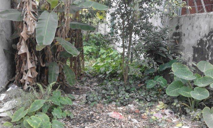 Bán đất 72,5m4 tại xã Mỹ Xá - Tp Nam Định