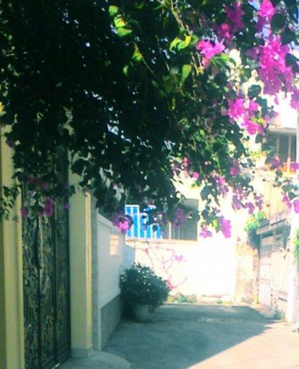 Bán nhà phố nở hậu 4,4(4,5)x19,5m 3 tầng hẻm 6m Quách văn Tuấn , P.12, Q. Tân Bình