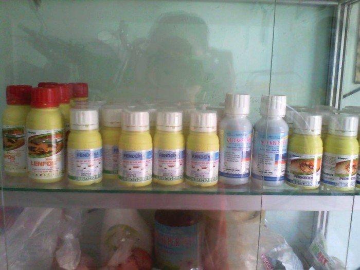FENDONA 10 SC Thuốc Diệt Muỗi hiệu quả nhất hiện nay2