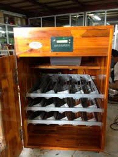 Chuyên cung cấp máy ấp trứng, máy ấp trứng công nghiệp, máy ấp trứng mini, máy ấp trứng3