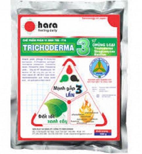 Chuyên cung cấp thuốc trừ nấm trichoderma, chế phẩm sinh học trichoderma,trichoderma0