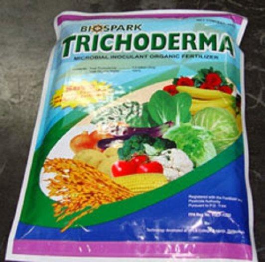 Chuyên cung cấp thuốc trừ nấm trichoderma, chế phẩm sinh học trichoderma,trichoderma3