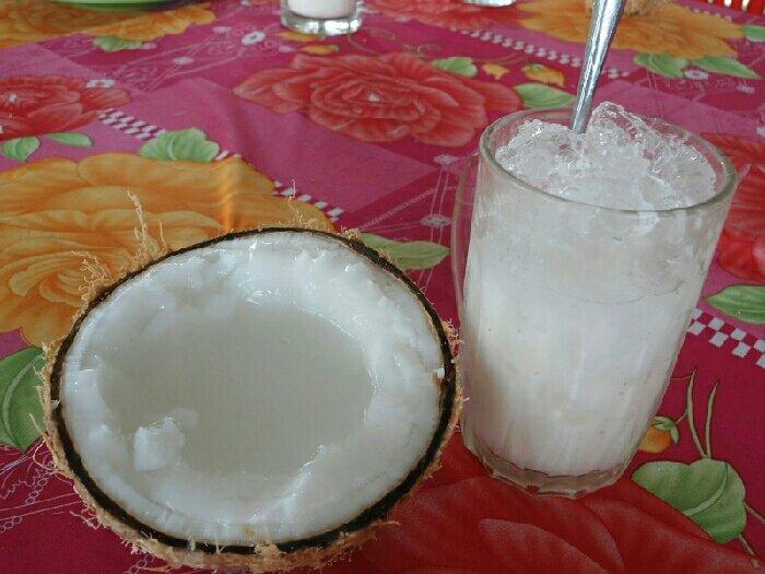 Dừa sáp chất lượng cao2