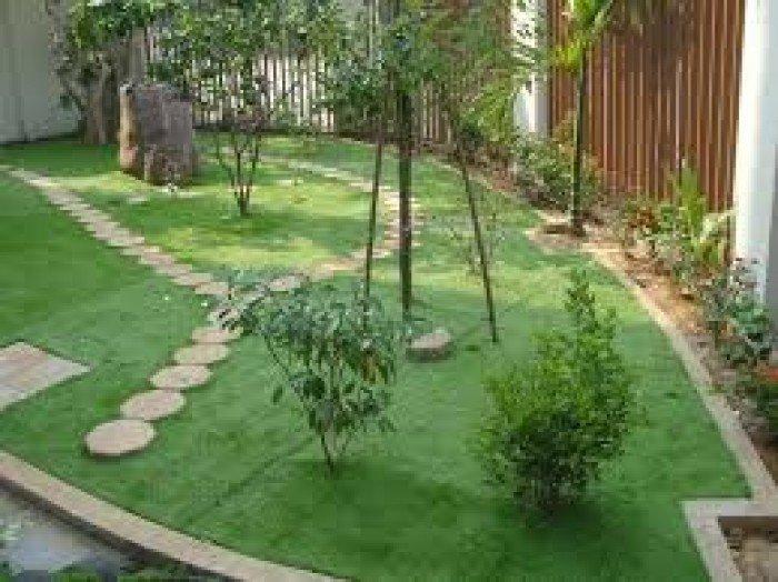 Cỏ Sân Vườn Thanh Lý1