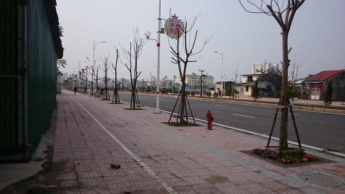 Tôi cần bán 85m2 đất Bồ Đề, Long Biên, Hà Nội. Gía 65 triệu/m2