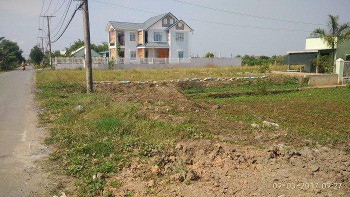 Bán đất tại Đường Hương Lộ 11, Bình Chánh, Hồ Chí Minh diện tích 3050m2 giá 1.3 Triệu/m²