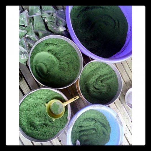 Thanh lý bột trà xanh Thái Nguyên2