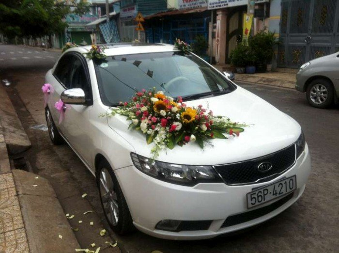 Cho thuê xe cưới 4-16c: mec, BMW, camry, city.