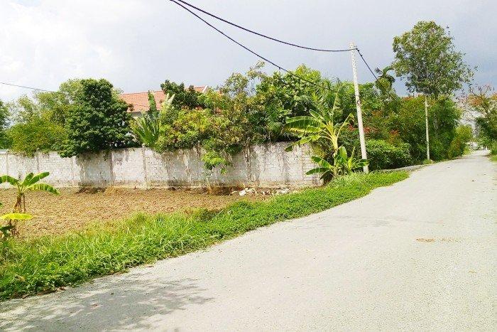 Bán đất tại Đường Nguyễn Văn Thời, Bình Chánh, Hồ Chí Minh diện tích 400m2 giá 3.4 Triệu/m²