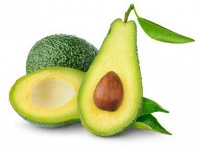 Chuyên cung cấp giống cây bơ sáp, giống bơ sáp,bơ sáp,bơ,số lượng lớn,giao hàng toàn quốc0