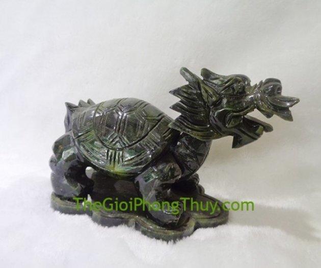 Rùa đầu rồng lam ngọc trung FH0651