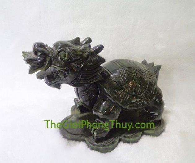 Rùa đầu rồng lam ngọc trung FH0650
