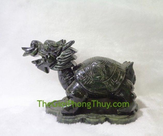 Rùa đầu rồng lam ngọc trung FH0652