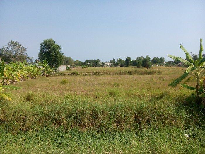 Lô đất 1,150m2 (31,5x36,5) thổ vườn, đường Nguyễn Văn Thời, Qui Đức, Bình Chánh - Giá 1,2triệu/m2=1,4tỷ