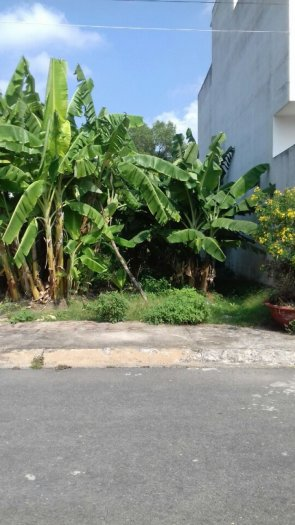 Bán Đất Biệt Thự Mini 7x20m Đường 14 KDC Q10 - P.Hiệp Bình Chánh