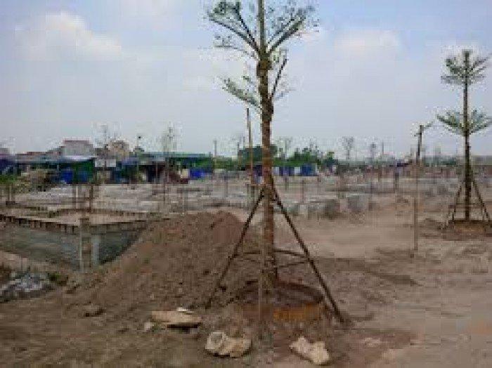 Bán đất  Bùi Công Trừng, Hóc Môn, HCM