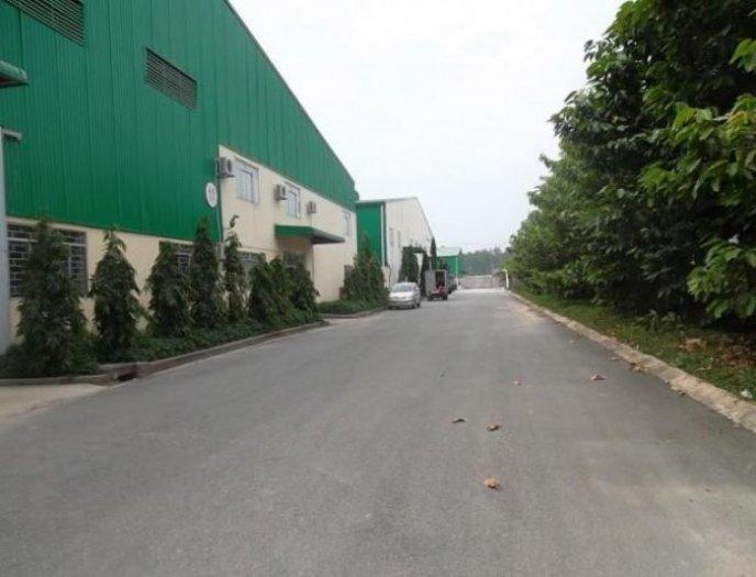 Cho thuê kho, xưởng HXT Tô Hiệu, Q.TP, (DT: 20x35m). Giá: 60tr/th