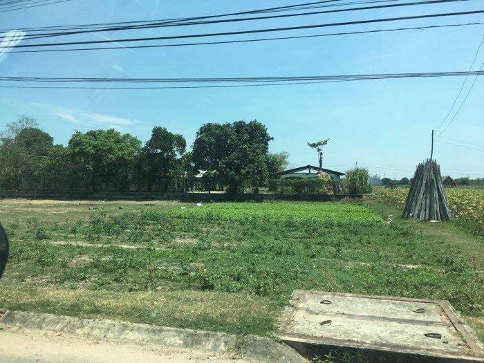 Bán 12.000m2 đất trồng cây lâu năm, xã Hiệp Phước, Nhà Bè - 31,5 tỉ