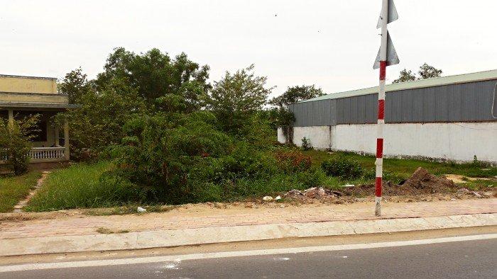 Cần bán gấp lô đất mặt tiền 1900m2 cho xe container hương lộ 11 tại Bình Chánh