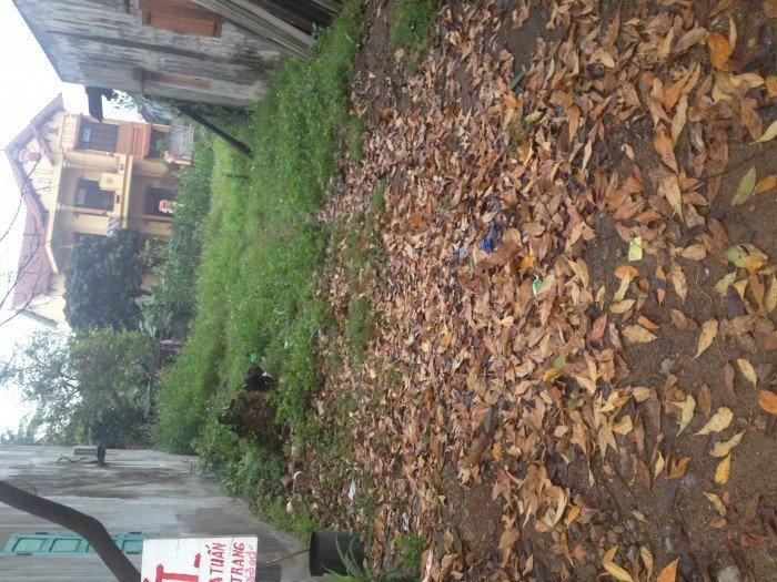 Đất mặt tiền bến xe buýt chợ Cộn tp Đồng Hới tỉnh Quảng Bình