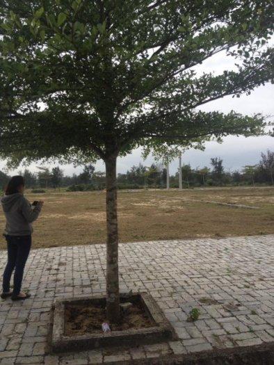 Nhận ngay 1 Chỉ Vàng SJC khi đầu tư đất Nam Đà Nẵng